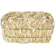 Medium Straw Bale